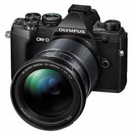 Olympus E-M5 MKIII + 12/200